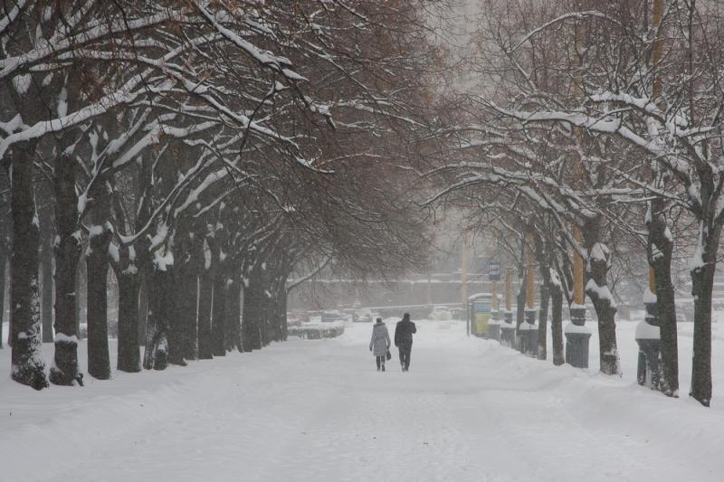 В москве в субботу будет морозно и
