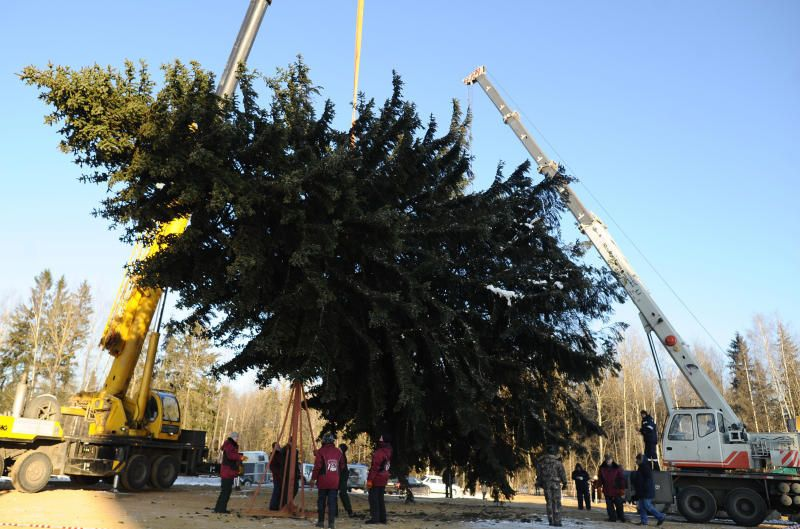 http://vmdaily.ru/photo/vecherka/2012/12/doc67ytixzvnpxk0pas6q6_800_480.jpg