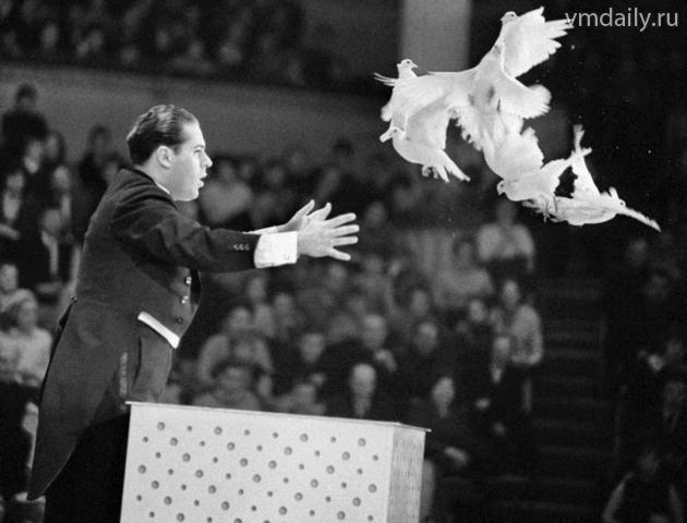 Игорь Кио на арене цирка (1969)