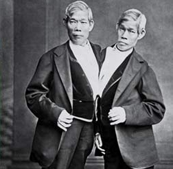 Энг и Чанг Баркеры / Wikipedia/Общественное достояние