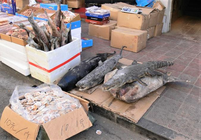 Продажа акул, ската и крокодила  / Олег Сыров, «Вечерняя Москва»