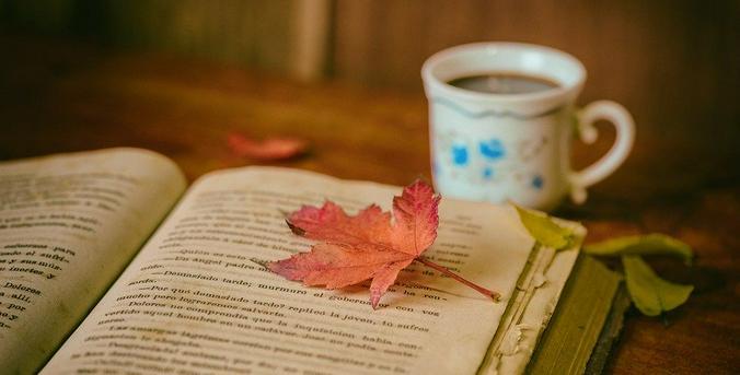 По словам Антона Чунчузова, мы теряем культуру чтения, она не прививается как должно в школе / pixabay.com
