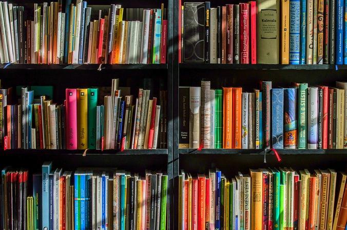 Если всю домашнюю библиотеку давно перечитали, зайдите в ближайшую общественную и выберите с десяток книг разных жанров / pixabay.com