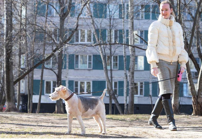 Только Москва и Подмосковье прошли пик коронавируса
