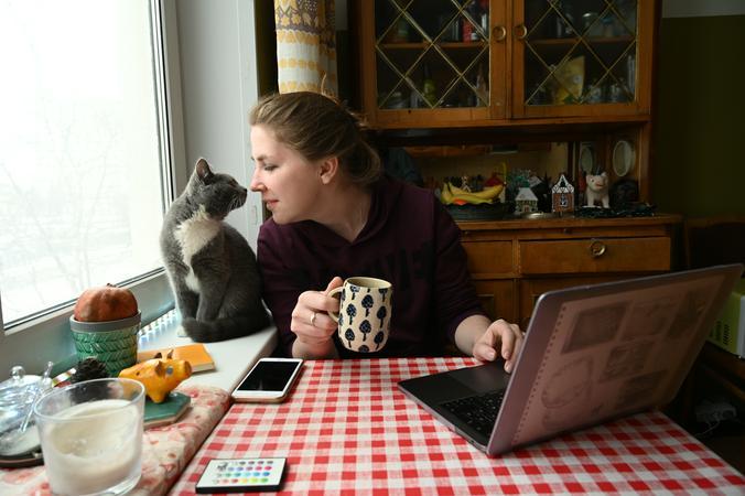 Кошка без симптомов болезни может быть носителем инфекции / item_Вечерняя Москва / Алексей Орлов, «Вечерняя Москва»