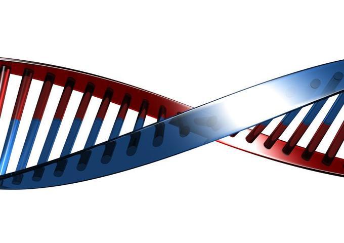 С помощью профилактики рака молочных желез на генном уровне можно снизить риск заболевания практически до нуля / www.sxc.hu