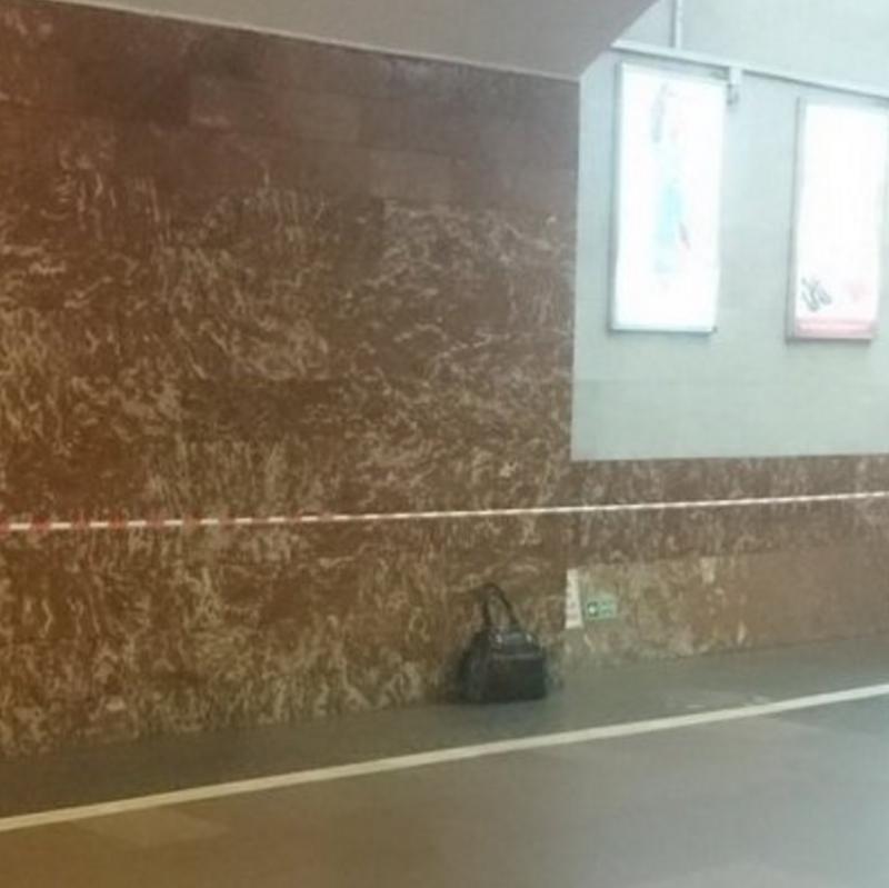 Сумка совзрывным устройством, обнаруженная на станции «Площадь восстания» / РИА Новости