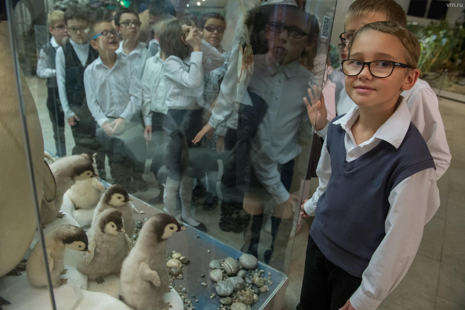 В музее для посетителей проведут викторины, лекции и познавательные игры
