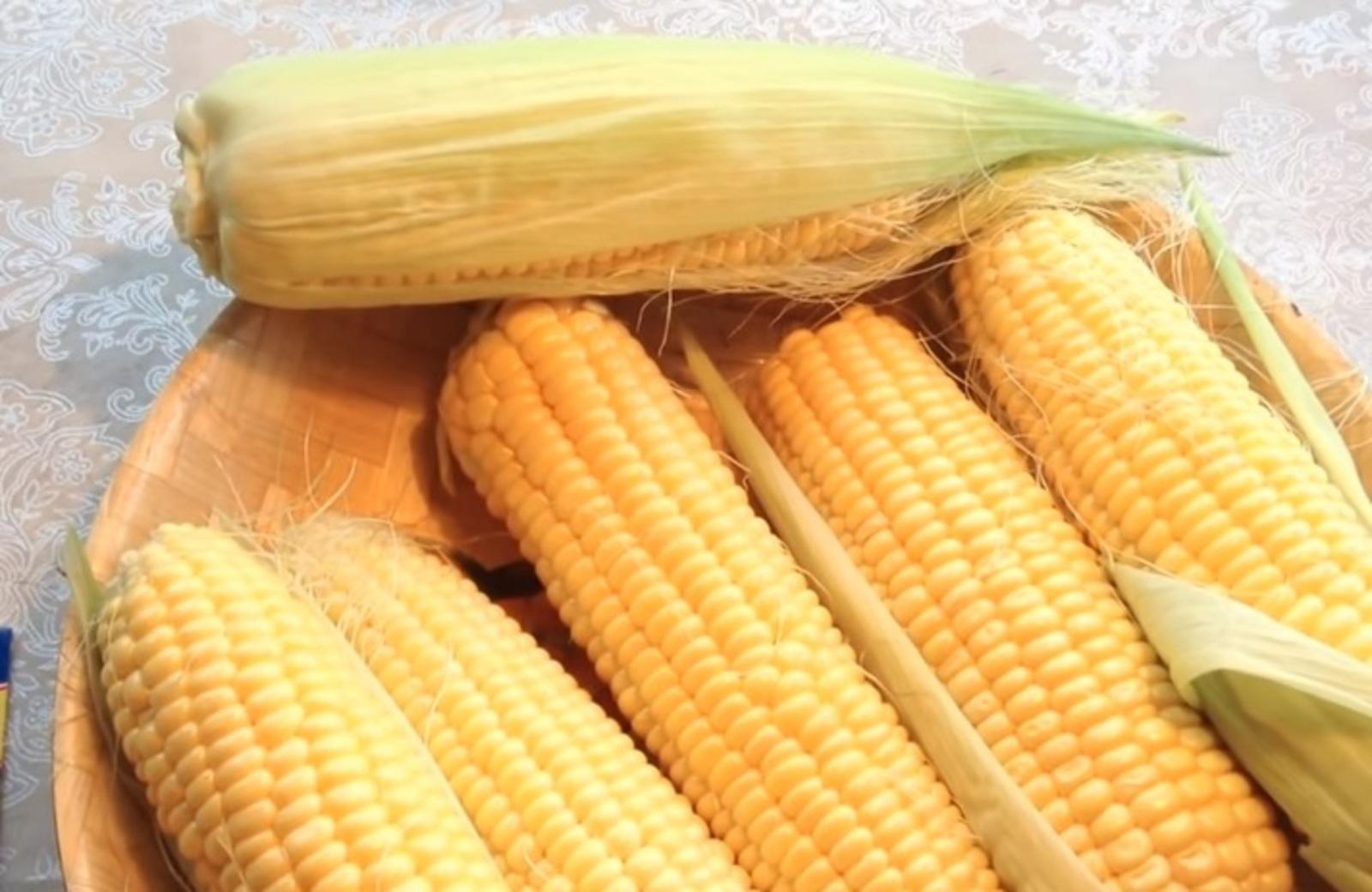 По словам специалиста, люди, которые едят генно-модифицированную кукурузу, могутпострадать от тех пестицидов, которые используются при выращивании / Скриншот с видео на youtube/Огород, где все растет