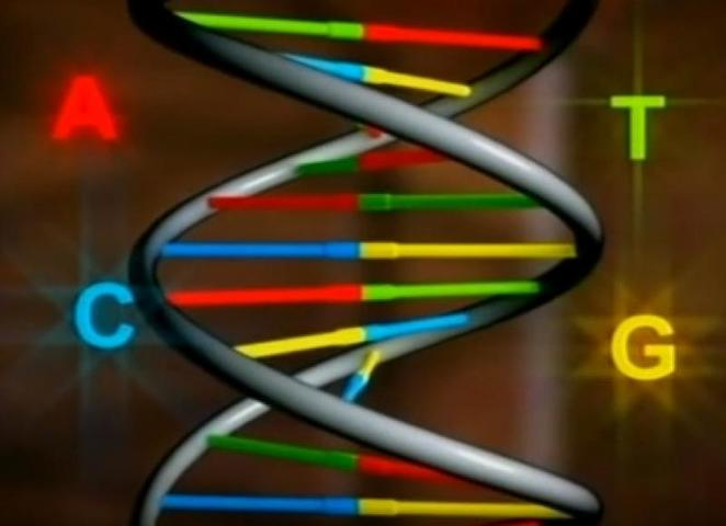 Британские музыканты закодировали музыку в молекулу ДНК