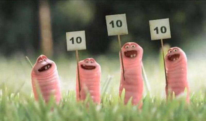 Смешные картинки про червяков