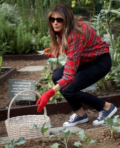 600 долларов за блузку для садоводства: пользователи высмеяли Меланью Трамп