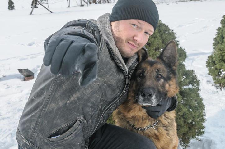 В новых сериях полюбившегося сериала помогать герою Никиты Панфилова бороться с преступностью будет пес по кличке Мухтар, сын легендарного Графа / Кадр из сериала «Пес»