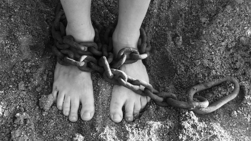 Адвокат сестер Хачатурян объяснил, зачем нужно понятие «преследование» в законопроекте о домашнем насилии