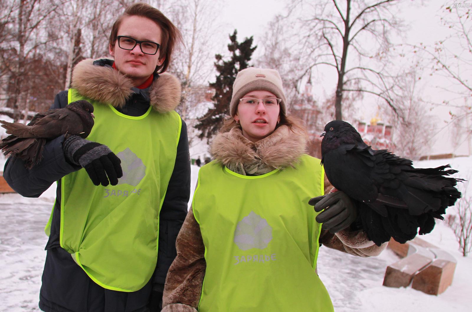 Необычные площадки для кормления птиц появятся в рамках экологического фестиваля «Снежный холст»