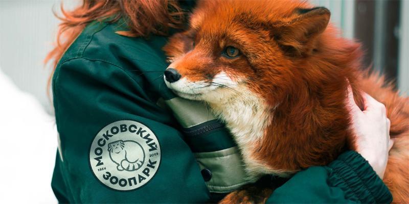 В этом году Московский зоопарк отметит свой юбилей, в связи с этим в течение года в зоосаде произойдет множество изменений / официальный сайт мэра Москвы