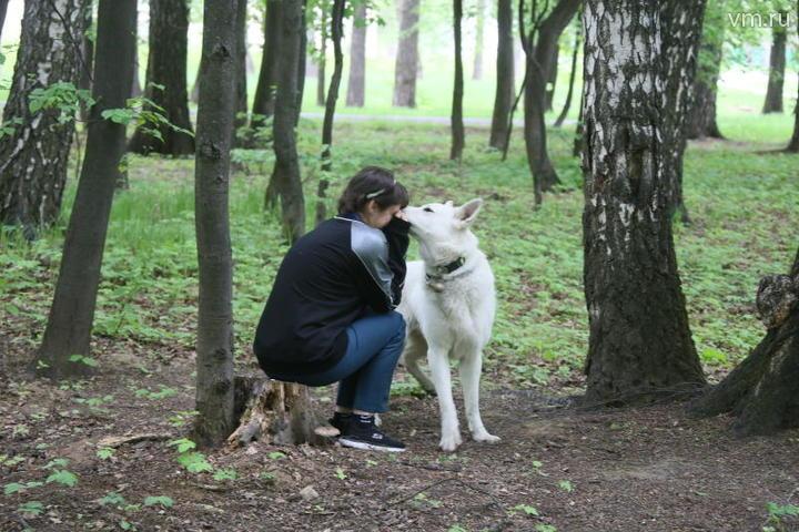 Белый пес Даня, несмотря на обилие камер, быстро обнаружил беглянку / Владимир Смоляков, «Вечерняя Москва»