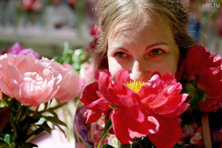 В павильоне сада пройдет настоящий цветочный парад длиной в несколько недель: до 26 июня плавно сменять друг друга будут сотни растений разных сроков цветения / Наталья Феоктистова, «Вечерняя Москва»