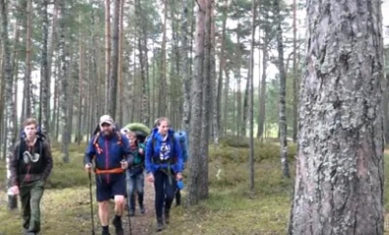 Новый экологический маршрут для туристов появился в Ленинградской области