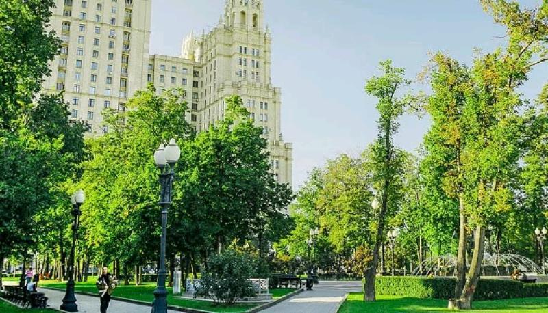 В рамках программы городского благоустройства было высажено свыше 13 тысяч деревьев и 300 тысяч кустарников / взято с официального сайта мэра Москвы